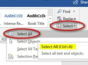 beginning a word document select all