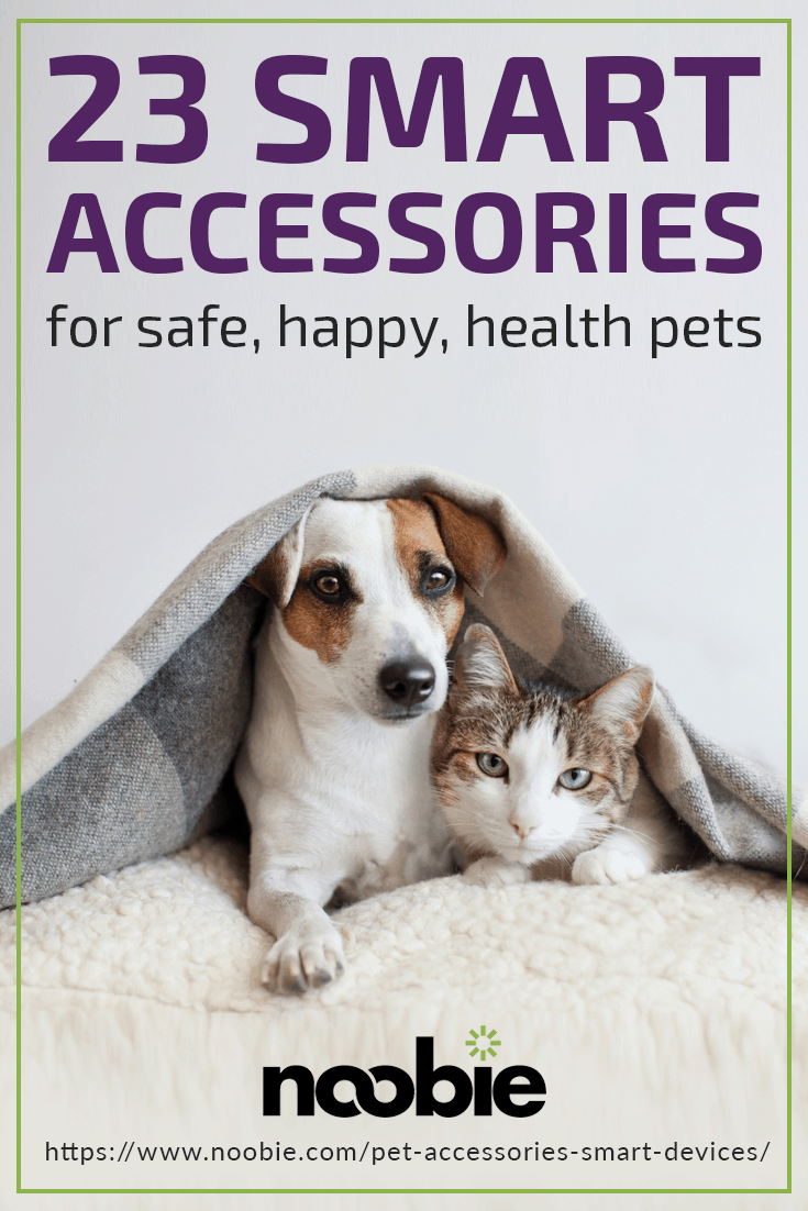 23 Tech-Forward Pet Accessories To Share With Your Furry Friend | https://www.noobie.com/pet-accessories-smart-devices/