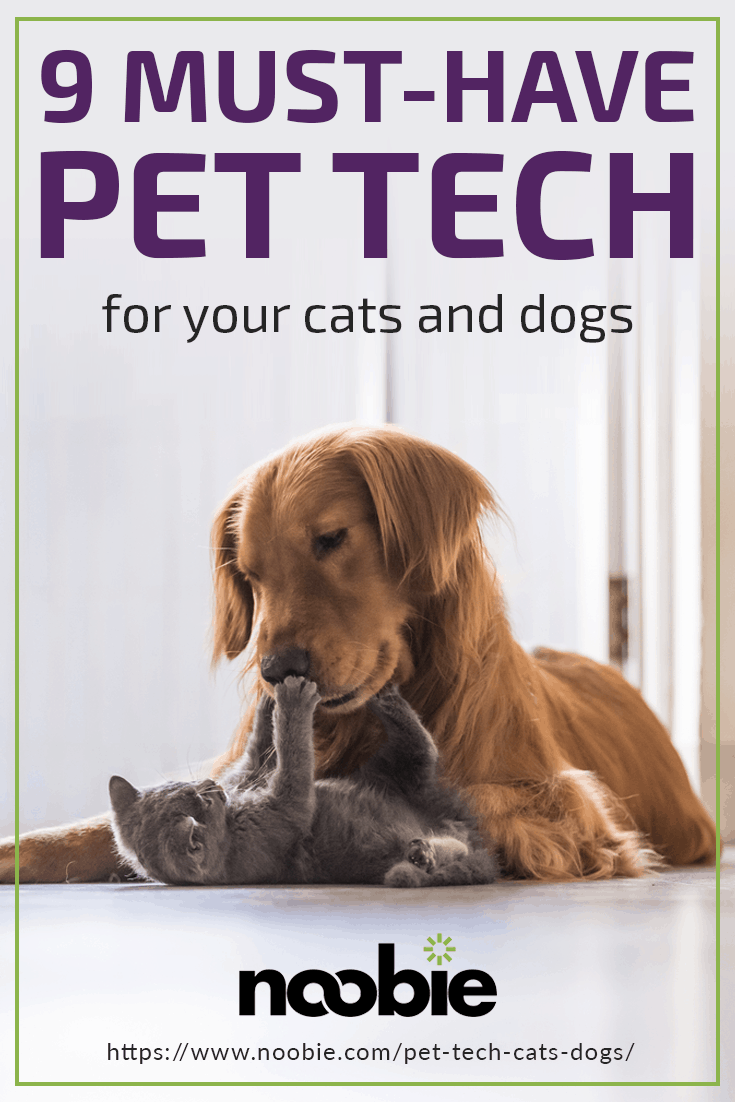 9 Must-Have Pet Tech For Your Cats and Dogs | https://www.noobie.com/pet-tech-cats-dogs/