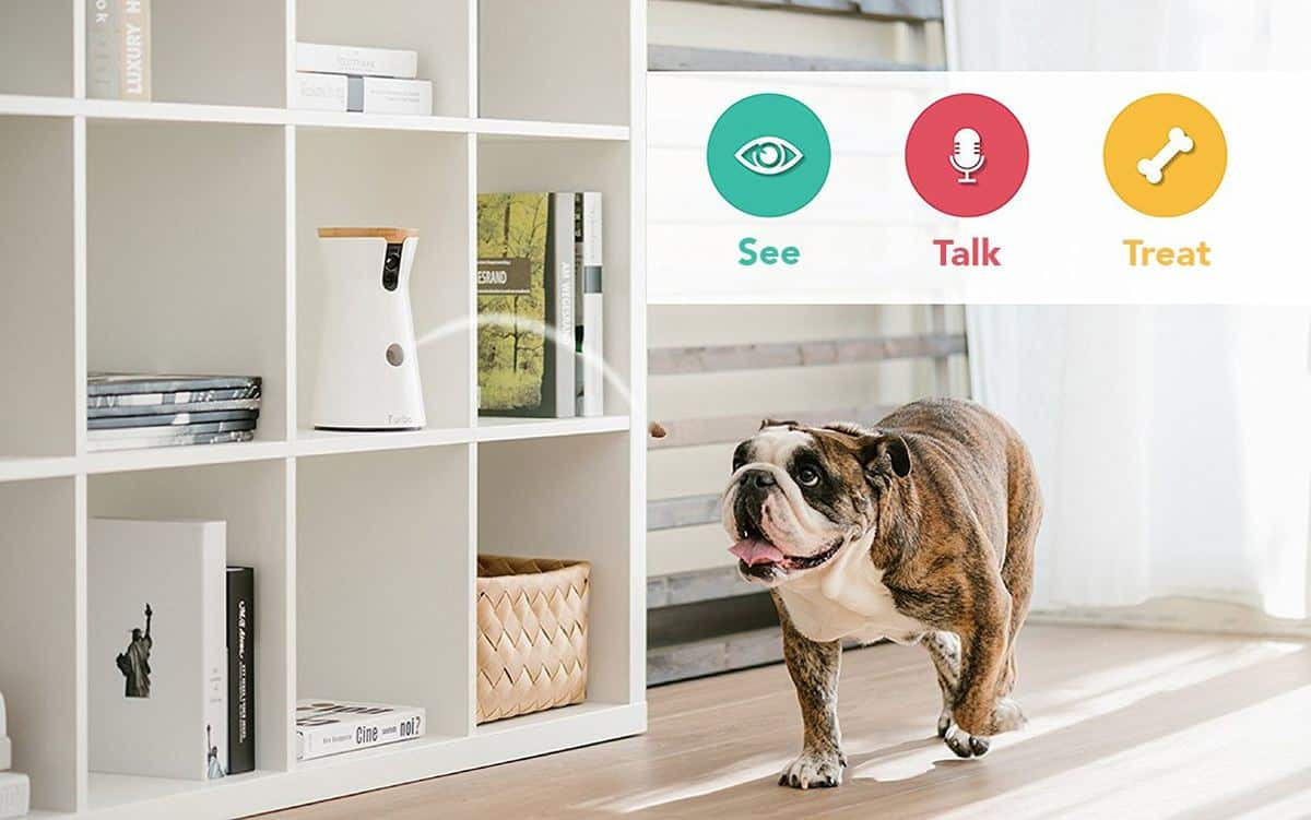 Furbo Treat-Tossing HD Dog Camera | Must-Have Pet Tech For Your Cats and Dogs