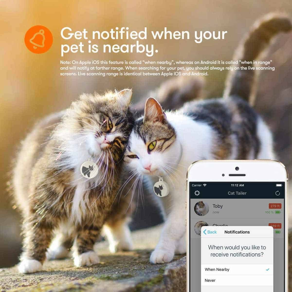 CAT TAILER Bluetooth Cat Tracker | Best Pet Trackers Available On Amazon