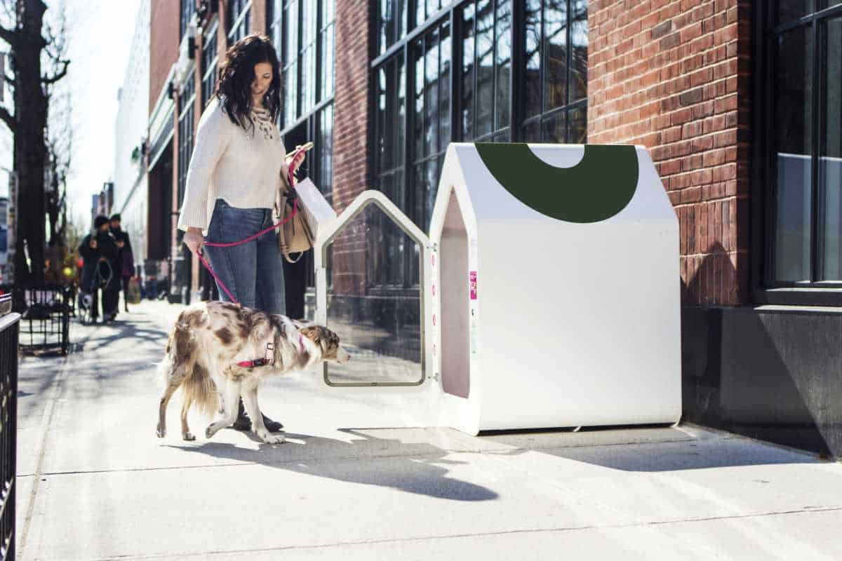 Dog Parker | Tech-Forward Pet Accessories To Share With Your Furry Friend