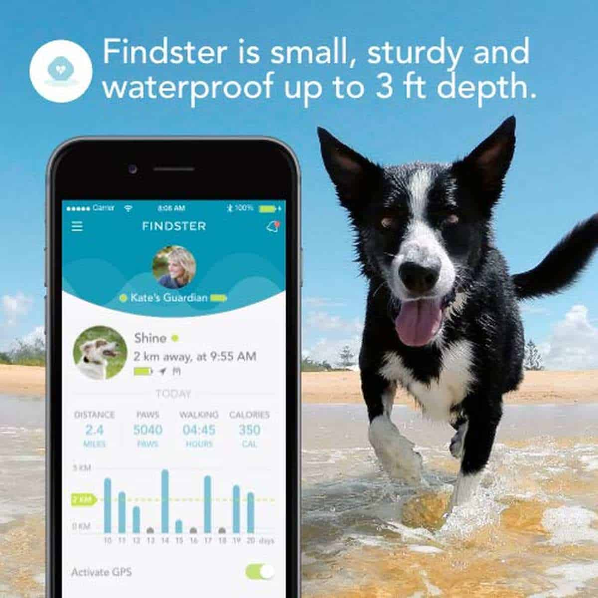 Findster Duo+ Pet Tracker | Best Pet Trackers Available On Amazon
