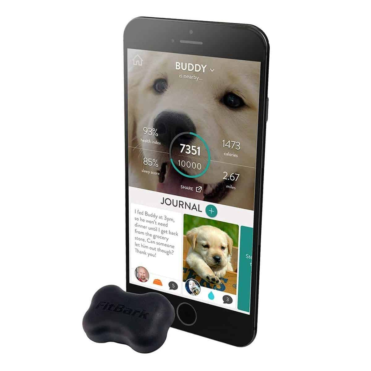 Fitbark 2 | Tech-Forward Pet Accessories To Share With Your Furry Friend