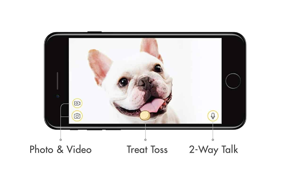 Furbo App support | Is The Furbo Dog Camera As Smart As They Say It Is?