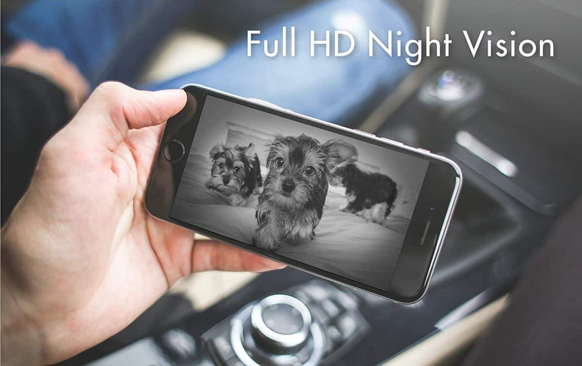 Night Vision View | Is The Furbo Dog Camera As Smart As They Say It Is?