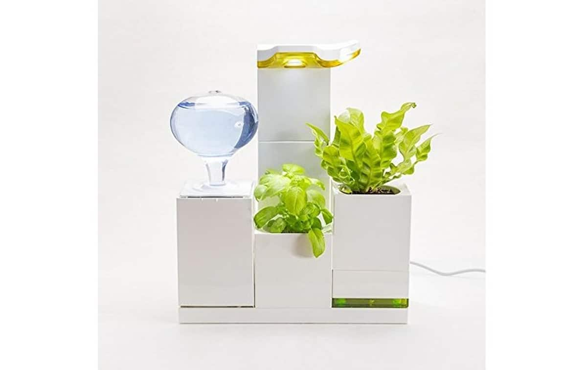 LeGrow Office Green Smart Self-Watering Herb Garden | Robotic Lawn Mowers and Other Smart Gadgets for the (Hard) Yard Work | lawn care
