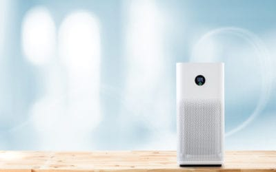 Top Air Purifiers That Are Worth the Investment