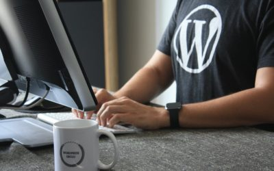 Can WordPress Help You With Your New Business?